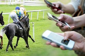 Betting Horses
