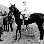 Omaha horse