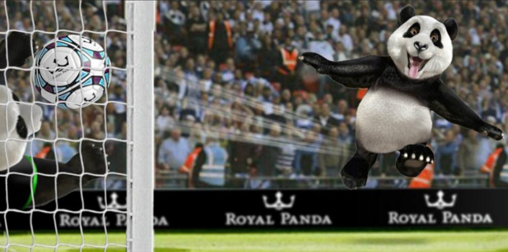 Royal Panda Sports Betting